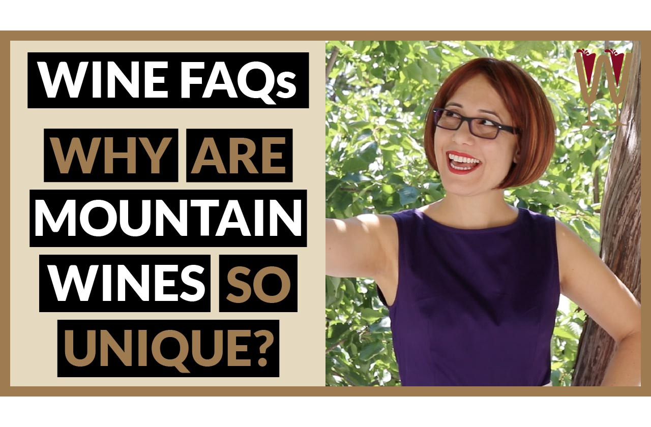 Mountain Grapes and HighAltitude Wines in Cyprus