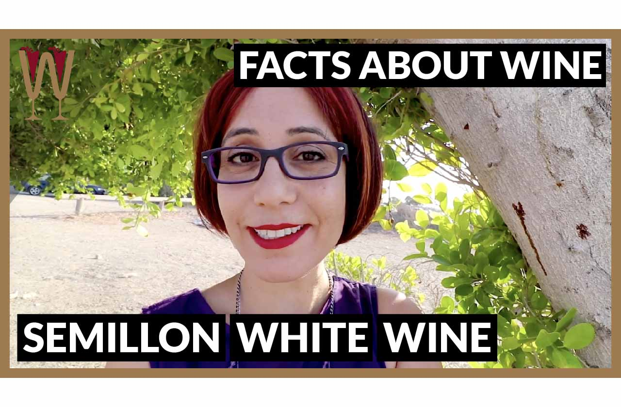 What does Semillon taste like?