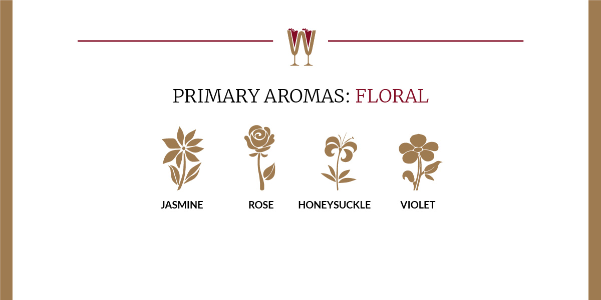 Art showing a selection of floral primary aromas in wine for beginners