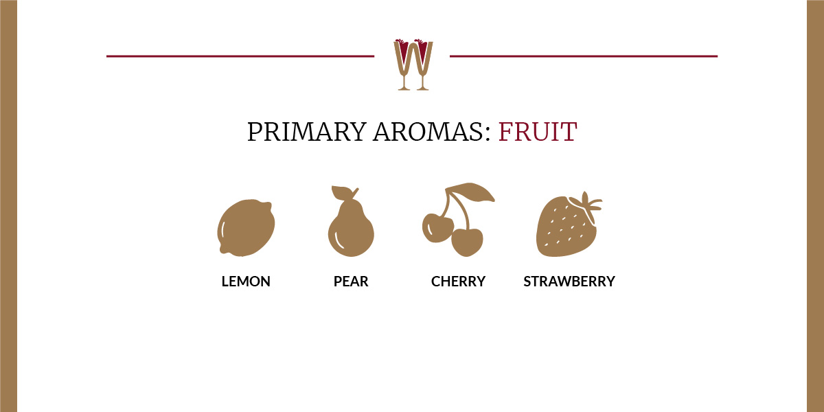 Art showing a selection of fruit primary aromas in wine for beginners