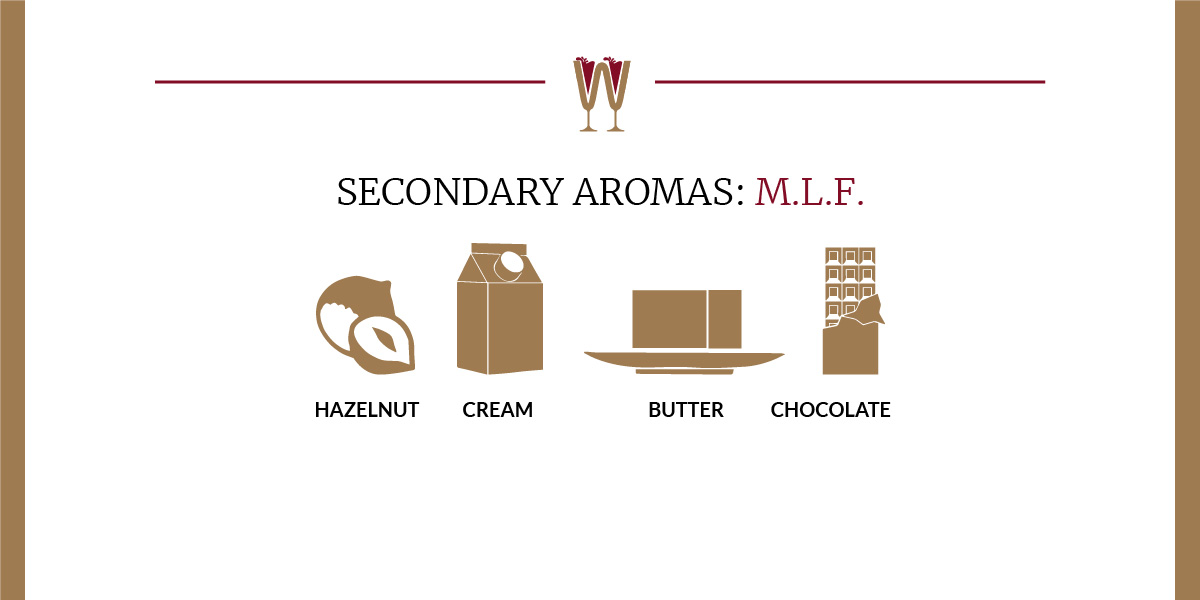 Art showing a selection of MLF secondary aromas in wine for beginners