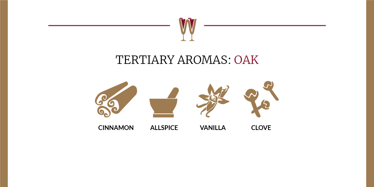 Art showing a selection of oak tertiary aromas in wine for beginners