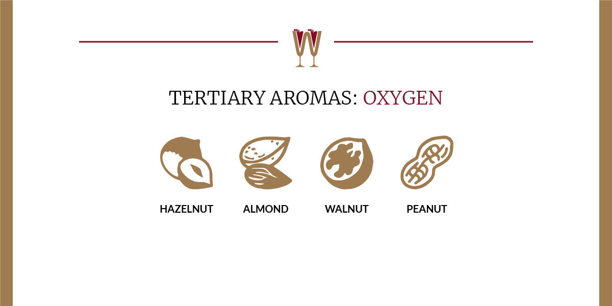 Art showing a selection of oxygen tertiary aromas in wine for beginners